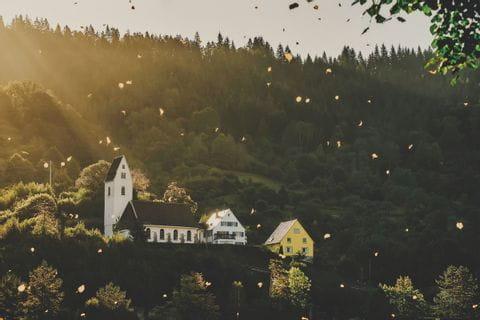 Herbststimmung an der Mosel