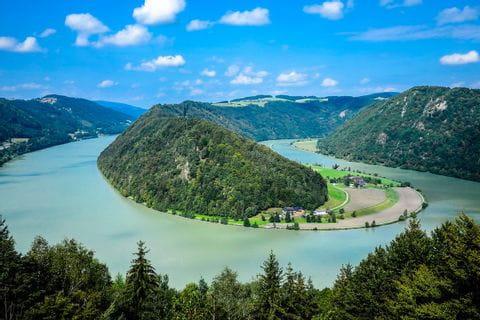 Schlögener Schlinge, Donau