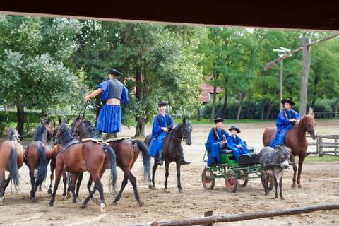 Ungarische Reitkunst in der Puszta