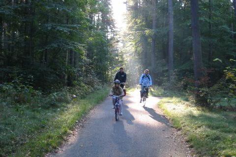 Radtour in den dänischen Wäldern