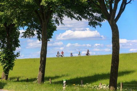 Radfahrer im Deichvorland