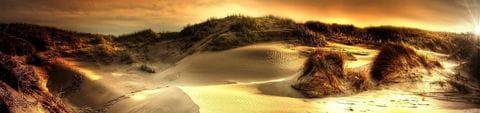 Zauberhafte Dünenlandschaften