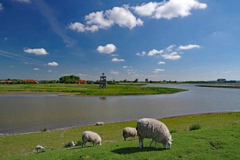 Osterscheelde Nationalpark, Niederlande
