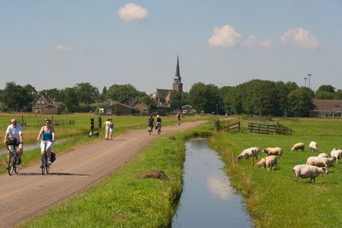 Cyclists North-Holland