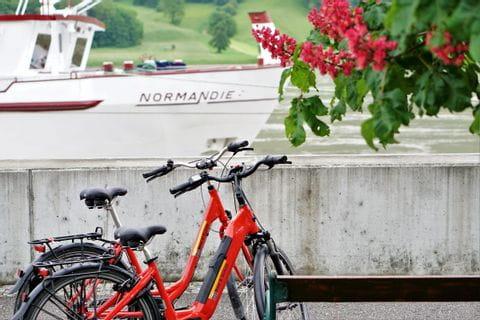 Räder vor der MS NORMANDIE